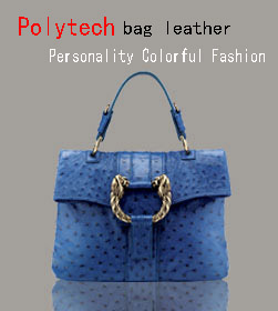 Polytech bag leather Personality Colorful Fashion